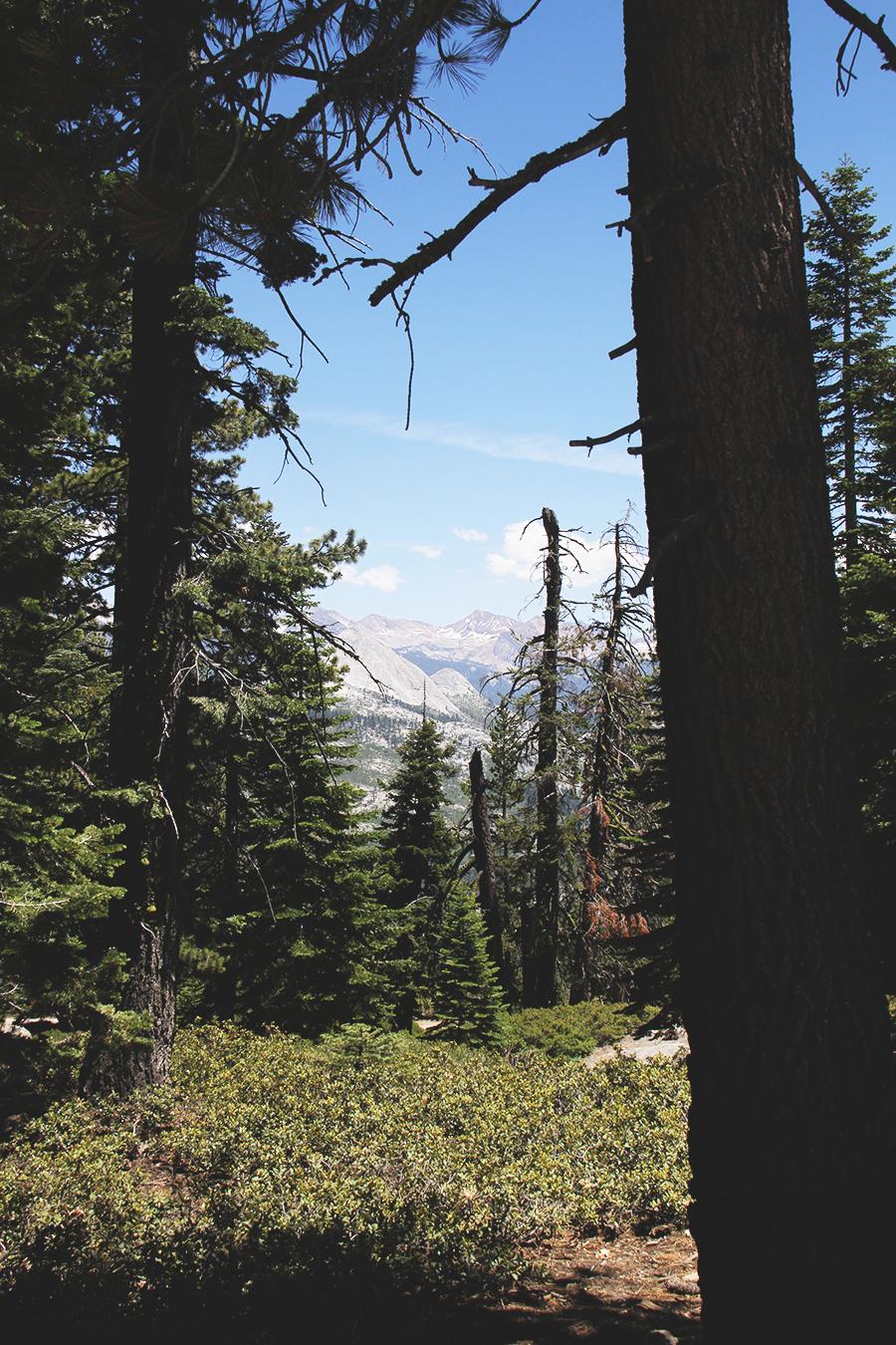 Yosemite_14