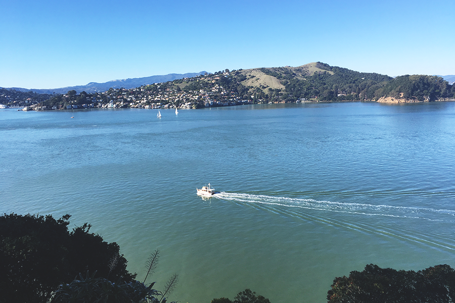 San Francisco Tip #6 – Angel Island