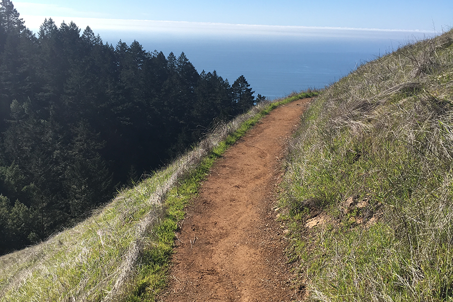 San Francisco Tip #7 – Hiking ved Stinson Beach