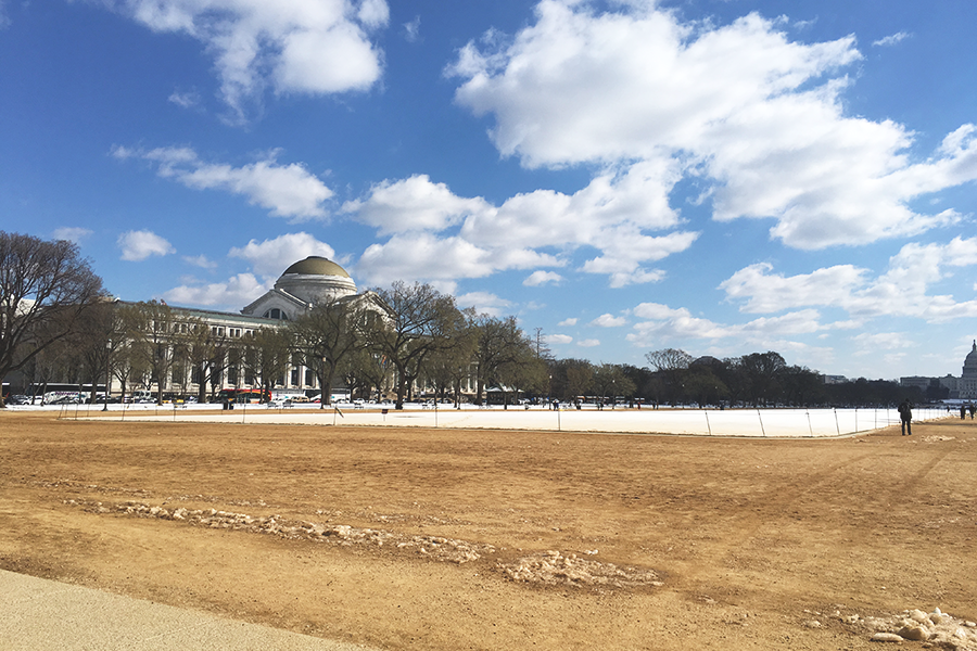 Hvad jeg nåede i Washington D.C.